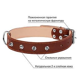 """НАШИЙНИК """"COLLAR"""" ПОДВІЙНОЮ З ШИПАМИ (ШИРИНА 35ММ, ДОВЖИНА 48-63ДИВ), ЧОРНИЙ коричневий"""