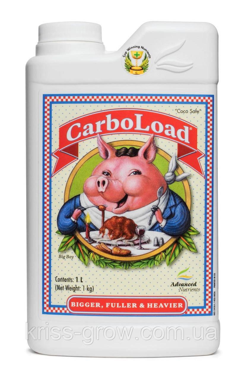 CarboLoad 0,5 л