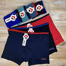 Трусы Taso шорты 5556 ткань Modal с тонкой резинкой. Набор из 2 штук в размере XXL
