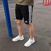 Мужские шорты Адидас выполнены из качественного материала Лакост Мужские шорты Adidas