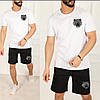 Мужской стильный спортивный костюм шорты и футболка