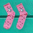Яскраві барвисті шкарпетки з принтом кіт драп Rock'n ' socks, фото 2