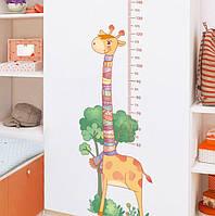 Интерьерная наклейка ростомер Жираф в шарфе  GS9776