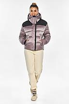 Куртка пудровая элегантная женская модель 57520, фото 2