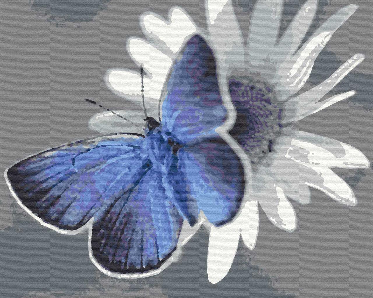 Картина по номерах метелик комахи 40х50 Лазурик