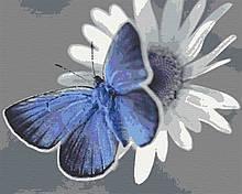 Картина по номерам бабочка насекомые микро мир 40х50 Лазурик