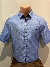 Мужская рубашка батал на кнопках 3XL,5XL,6XL