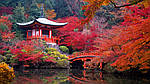 ГРУППОВОЙ ТУР в Японию «Сакура-2016» эконом на 8 дней/7 ночей, фото 3