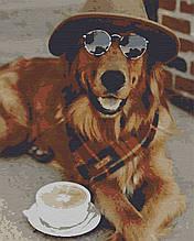 Картина за номерами тварини собака 40х50 Капучіно