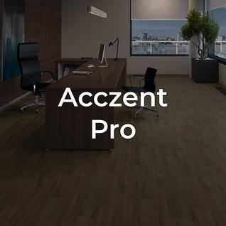 Acczent Pro