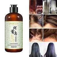 Шампунь с экстрактом Женьшеня и Горца многоцветкового Images Fresh Moist Silk Smooth Tough Shampoo, фото 1