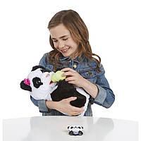 Fur Real Friends Интерактивная игрушка Малыш Панда, фото 1