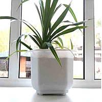 Большой белый квадратный вазон для больших растений 23 л, напольный вазон