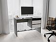 Письменный стол СП-8 с тумбой Антрацит/Белый, фото 2