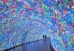 ГРУППОВОЙ ТУР в Японию: «Золотое кольцо Японии - зимний сезон» на 8 дней / 7 ночей, фото 4