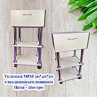 Візок косметологічна MINI 2.0 з ящиком зверху TM BEAUTYCOMFORT