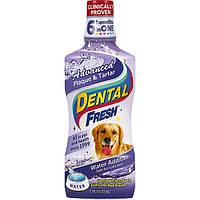 SynergyLabs Dental Fresh Advanced СИНЕРДЖИ ЛАБС СВЕЖЕСТЬ ЗУБОВ ЭДВАНСЕД жидкость от зубного налета и запаха из