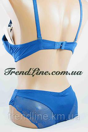 Комплект В Weiyesi № 1395 Пуш-ап Светло-синий, фото 2