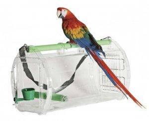 Для птахів
