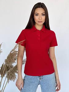 Женская однотонная футболка поло из лакосты 42-48 р