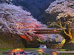 ГРУППОВОЙ ТУР ПО ЯПОНИИ: «MONTHLY JAPAN TOUR» на 7 дней / 6 ночей, фото 4