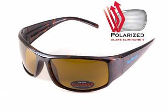 Поляризационные очки BluWater FLORIDA 1 Brown