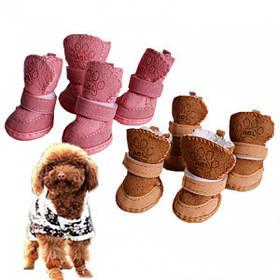 Обувь и аксессуары для животных