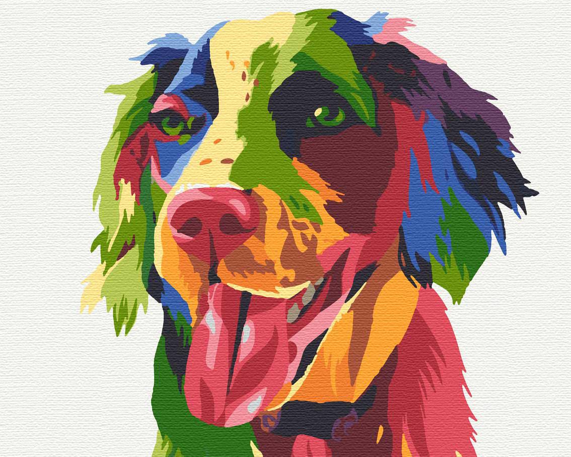 Картины по номерам животные пес 40х50 Спаниель