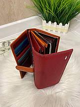 Женский кожаный кошелёк Dr. Bond Business с визитницей красный КБВ852, фото 2