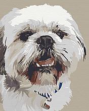 Картина за номерами тварини собаки 40х50 Моллі