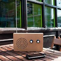 """Картонне FM-радіо і МР3-плеєр """"Еко"""""""