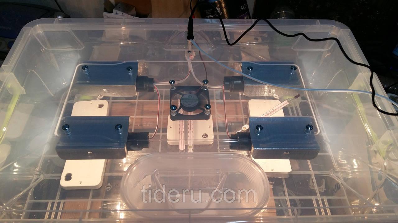 Інкубатор для яєць Курочка Ряба 56, в пластиковому корпусі, вентилятор, 4 лампи