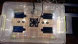 Інкубатор для яєць Курочка Ряба 56, в пластиковому корпусі, вентилятор, 4 лампи, фото 2