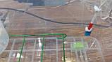 Інкубатор для яєць Курочка Ряба 56, в пластиковому корпусі, вентилятор, 4 лампи, фото 3