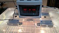 Инкубатор для яиц Курочка Ряба 56, в пластиковом корпусе, вентилятор, 4 лампы, с регулятором влажности, фото 1