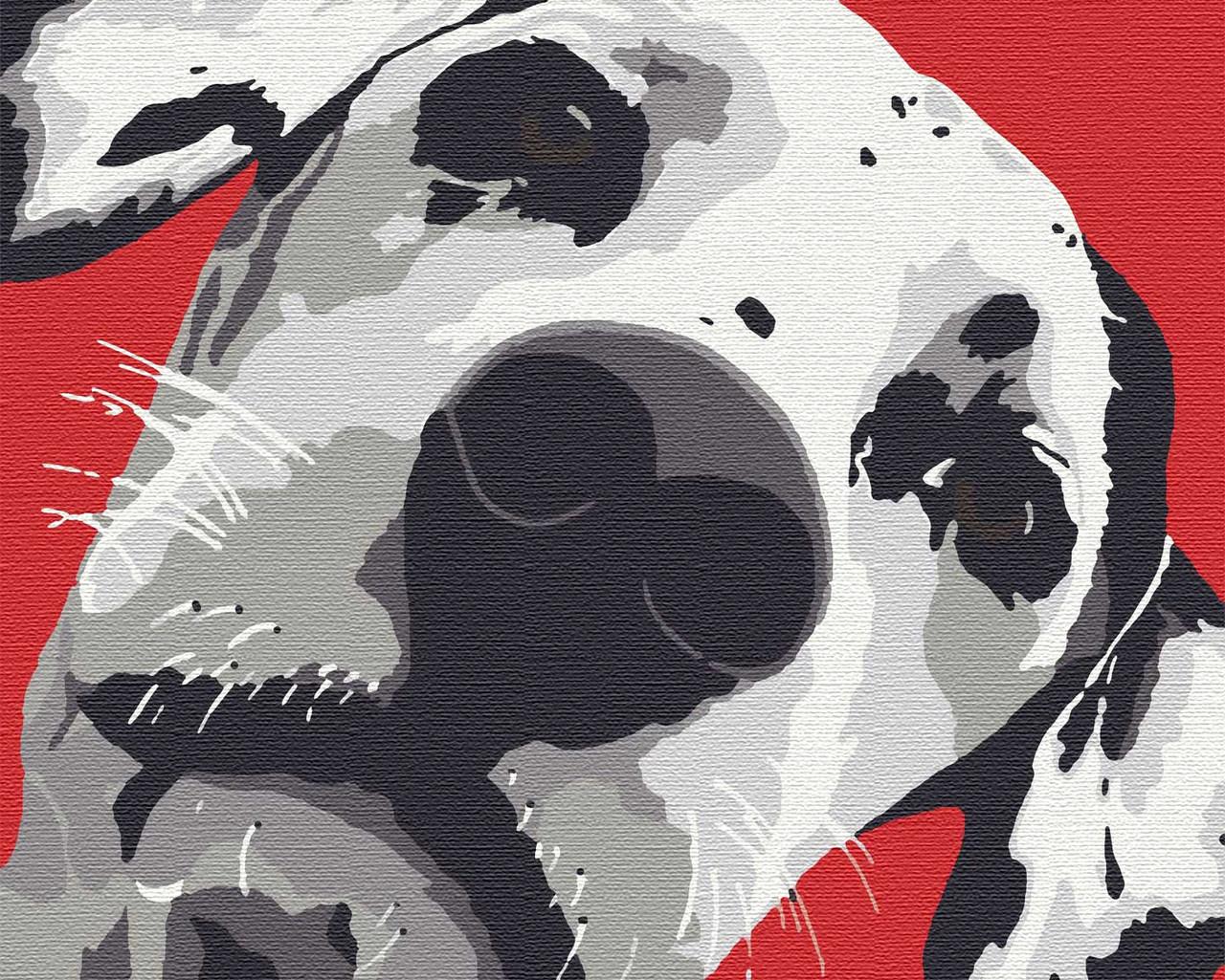 Картина по номерам животные пес 40х50 Пятнышко