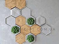 """Гіпсові декоративні 3Д панелі на стіну """"Серія соти"""" під мох 248 × 214 мм"""