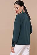 Блуза Жанна д/р, фото 3