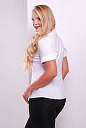 Блуза Норма-Б к/р, фото 2
