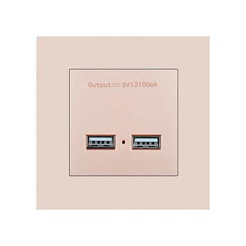 USB розетка SRAN 2xUSB 5V 2.1A gold