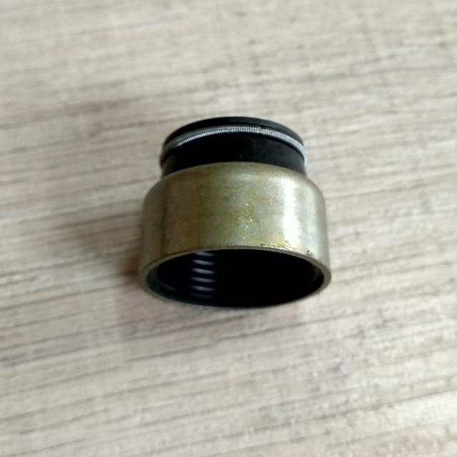 Сальник клапана (маслосъемный ковпачок) Howo, Хово, Sinotruk
