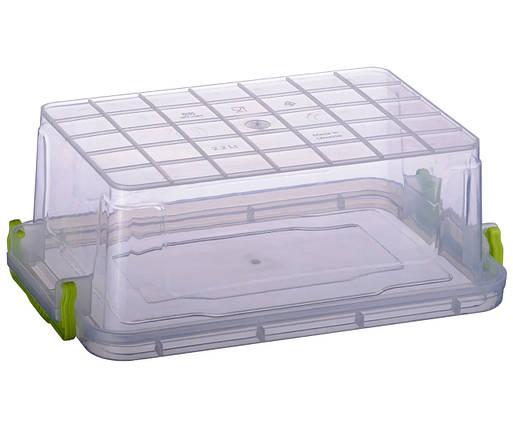 Контейнер пищевой Ал-Пластик Elit 2.2 л. плоский 256 х 170 х 95 мм, фото 2