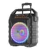 Колонка акумуляторна з радіомікрофонами UF-983 / 120W (USB/FM/Bluetooth), фото 3