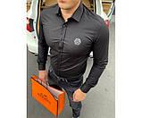 Рубашка Philipp Plein pasifik 1-3., фото 3