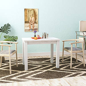 Стол раскладной Dinner 90*60/120 см белый/аляска ТМ ARTinHEAD