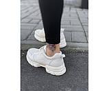 Жіночі кросівки punch 24-2+, фото 3