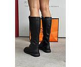 Жіночі чоботи true black 22-1+, фото 3