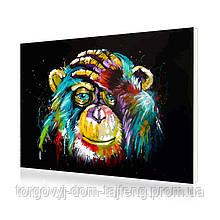 "Картина по номерам Lesko PH-9215 ""Радужный шимпанзе"" 40-50см (4767-14676a)"