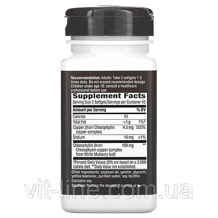 Nature's Way, Chlorofresh, концентрований хлорофіл, 90 м'яких таблеток, фото 2