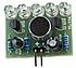 Модуль голосового управления светодиодами. Набор для самостоятельной сборки DIY kit, фото 3